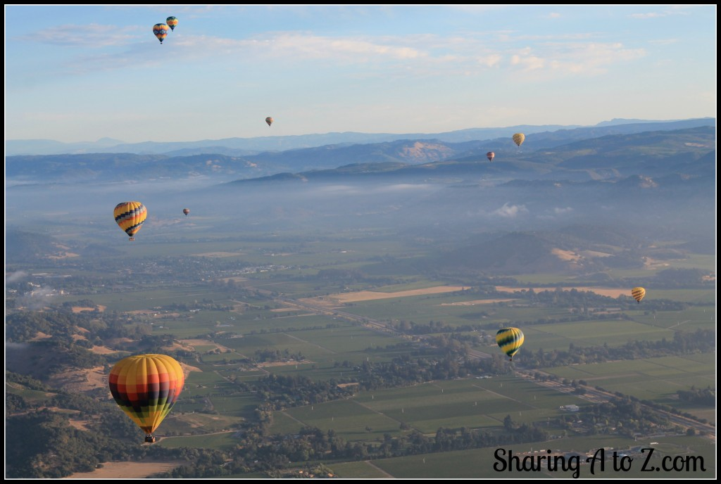 Napa from a hot air balloon